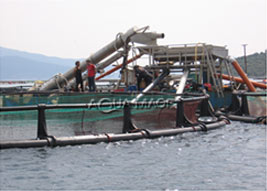SCREW ELEVATOR AND SORTING MACHINE ON RAFT  Aquaculture Equipment project cages intensive fish growing technology Mariculture